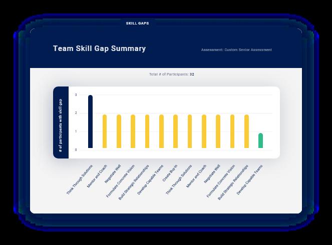 Skill Gap Graphic